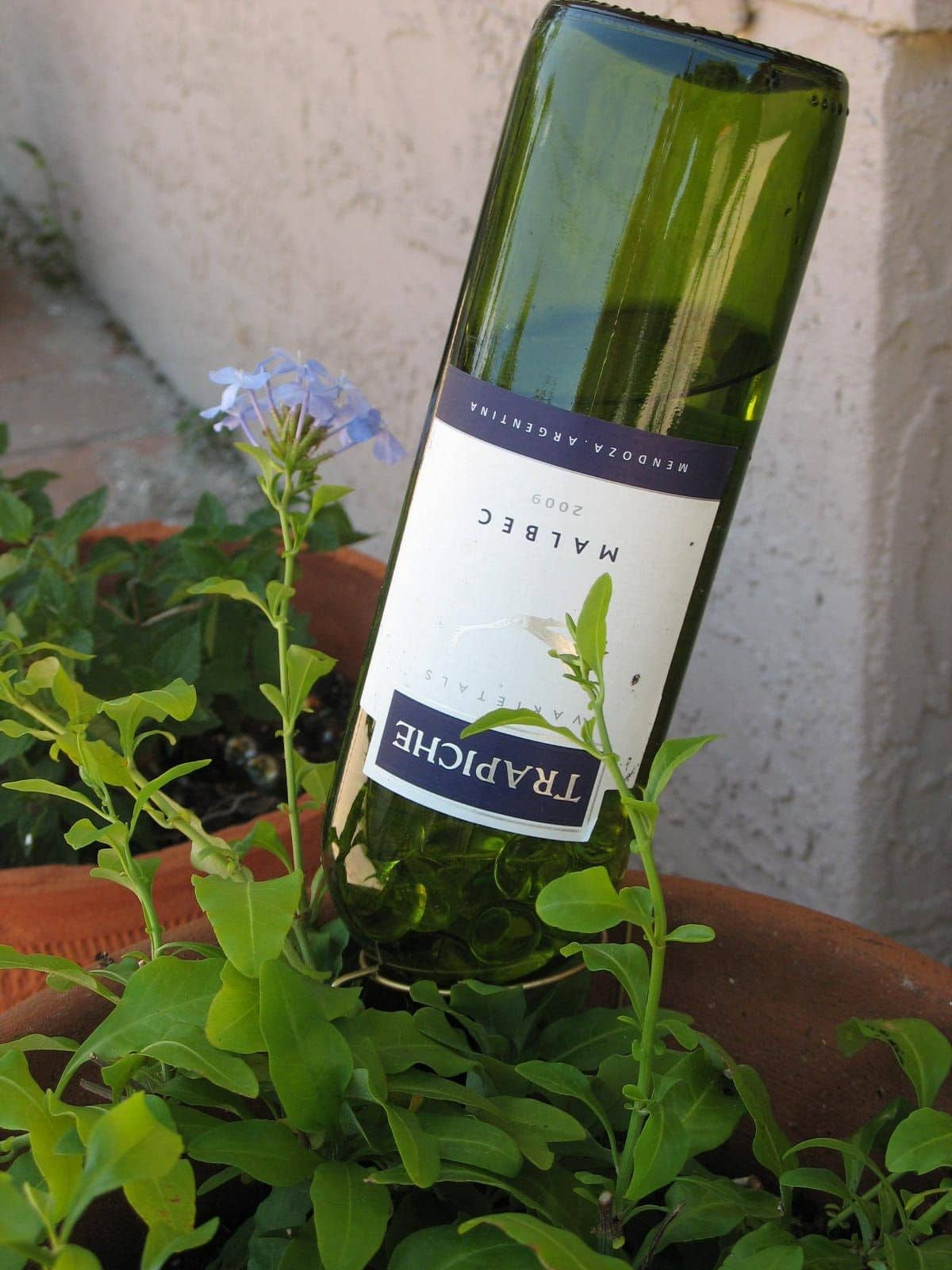 Automatic Plant Watering System - Diy self watering planter using a wine bottle